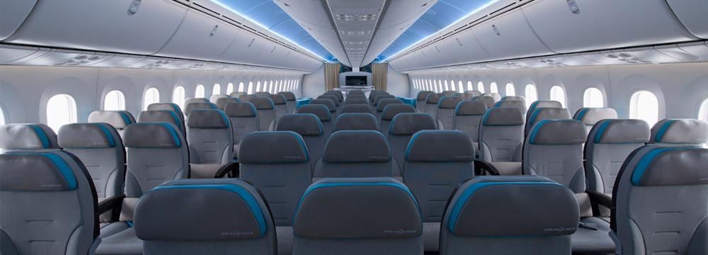Uçak Temizlik / Bakım Kimyasalları